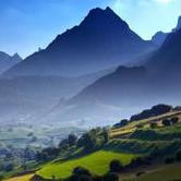 Pyreneerna