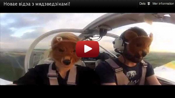 Stig Björne om björnar över Minsk
